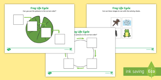 FREE! - Frog Life Cycle Worksheets (Minibeasts ...