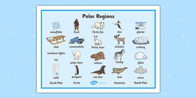 Polar Regions Word Mat Polar Regions Word Mat Polar Regions