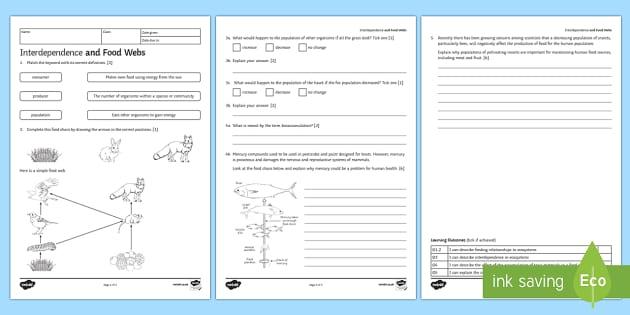 ks3 interdependence and food webs homework worksheet activity. Black Bedroom Furniture Sets. Home Design Ideas