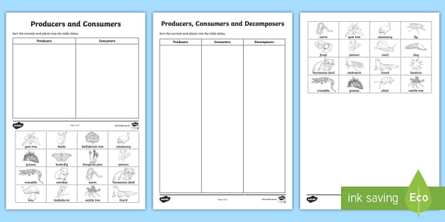 Producers Consumers And Decomposers Sorting Worksheet