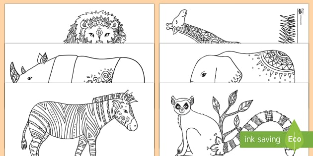 Wild Animal Pictures Mindfulness Colouring Sheets Pdf