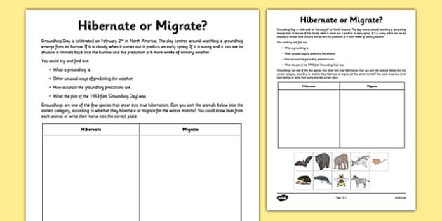 hibernate or migrate groundhog day worksheet activity sheet. Black Bedroom Furniture Sets. Home Design Ideas