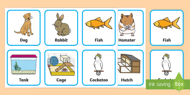 Pets And Their Homes Matching Game