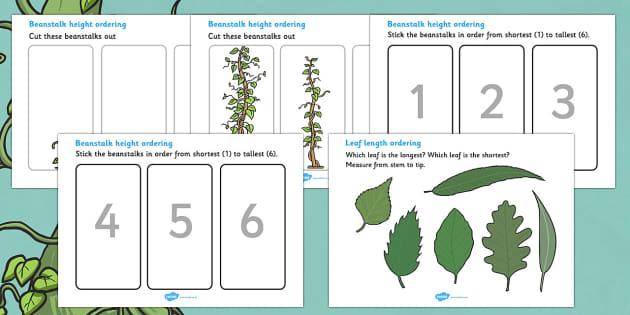 beanstalk height and length ordering worksheets beanstalk. Black Bedroom Furniture Sets. Home Design Ideas