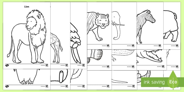Zoo Animals Coloring Pages (teacher Made)