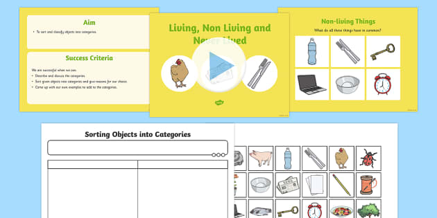 sorting living things non living things science lesson. Black Bedroom Furniture Sets. Home Design Ideas