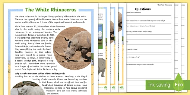 The White Rhinoceros Differentiated Reading Comprehension