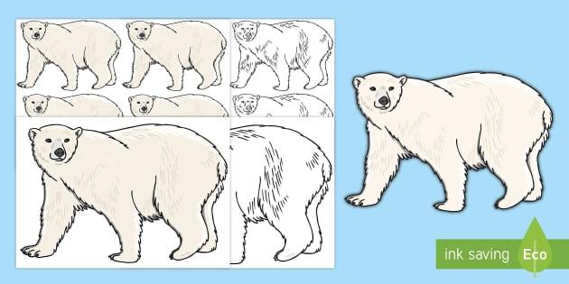 Editable A4 Polar Bear Template