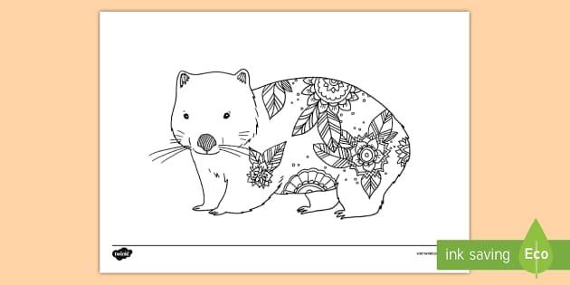 Wombat Mindfulness Colouring Page - Australian Mindfulness