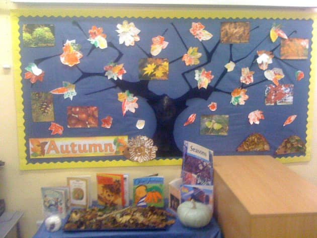Autumn leaf Season Display, classroom display, class display, Autumn, Seasons, weather, leaves, the seasons, Early Years (EYFS), KS1 & KS2 Primary Resource
