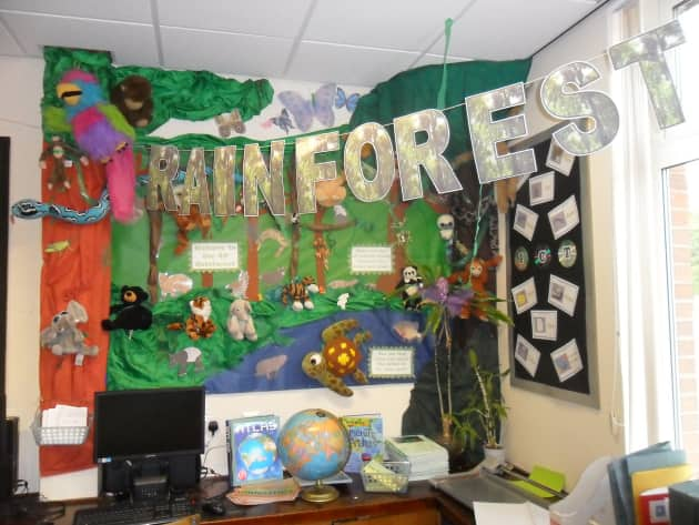History Classroom Decoration Ideas ~ Rainforest jungle and classroom display