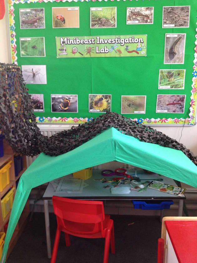 Role Play Minibeast Investigation Lab Display Classroom