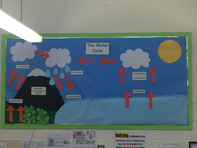 The Water Cycle Display 85