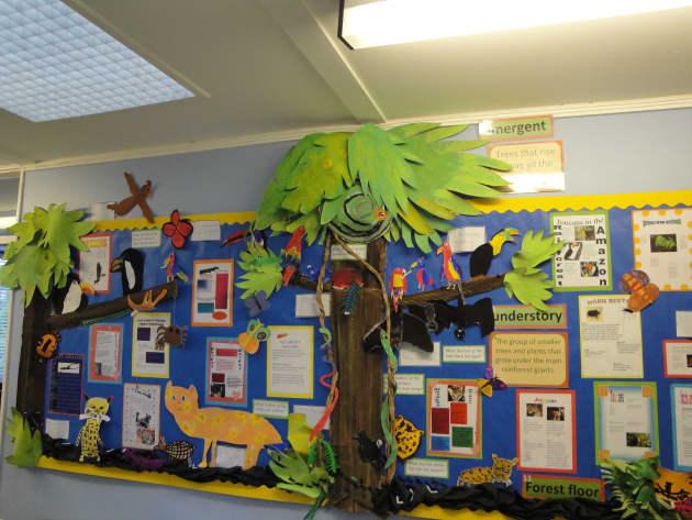 Classroom Display Ideas Ks2 ~ Amazon jungle display classroom displays animals