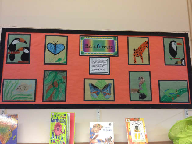 Rainforest Display, classroom Display, class display, book, geography, rainforest, animals, drawings, Early Years (EYFS),KS1&KS2 Primary Teaching Resources