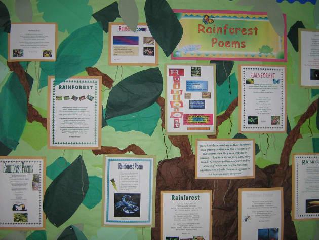 rainforest Poem Display, classroom displays, class display, forest, poem, literacy, rainforest, Early Years (EYFS), KS1& KS2 Primary Teaching Resources