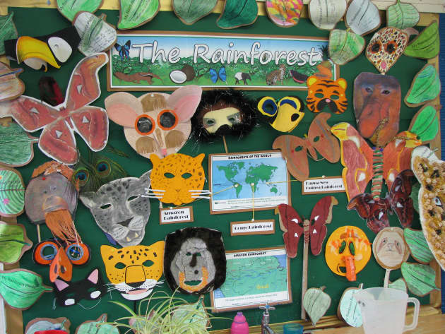 The Rainforet Animals Display Classroom Display Amazon