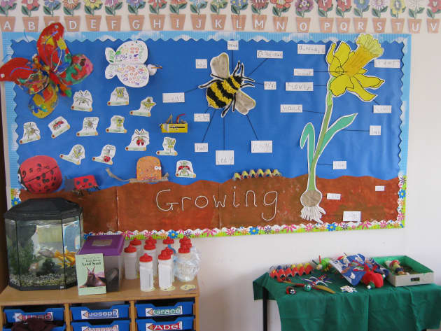 Growing Display, classroom display, class display, Plants, flowers, growth, growing, planting, life cycle, Early Years (EYFS), KS1 & KS2 Primary Resources