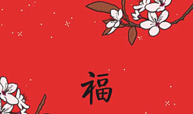 chinese new year - 2018 Chinese New Year