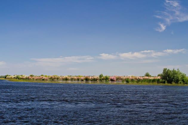 Canal Crișan   Caraorman 1