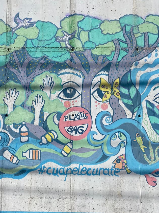 Mural eco din Giurgiu detaliu